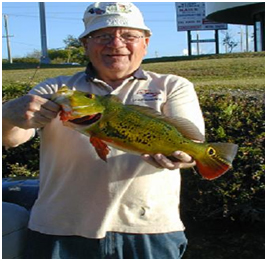 This Peacock Bass lured Jake to Miami Fla.